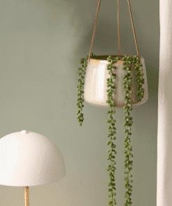 Hangende bloempotjes present time