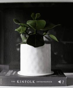 Sfeerfoto bloempot viksberg wit small